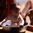 En pleine steppe, la famille de Bayarjargal vit au plus proche de la nature