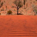 L'immensité désertique du centre de l'Australie