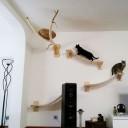 Arbre a chat sur un mur
