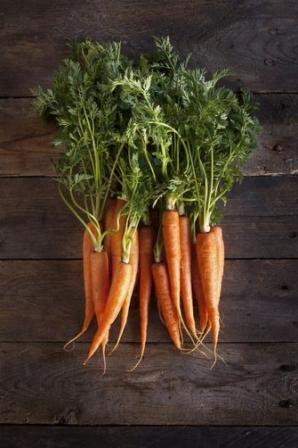 la carotte aliments d 39 avril doctissimo diaporama nutrition doctissimo. Black Bedroom Furniture Sets. Home Design Ideas