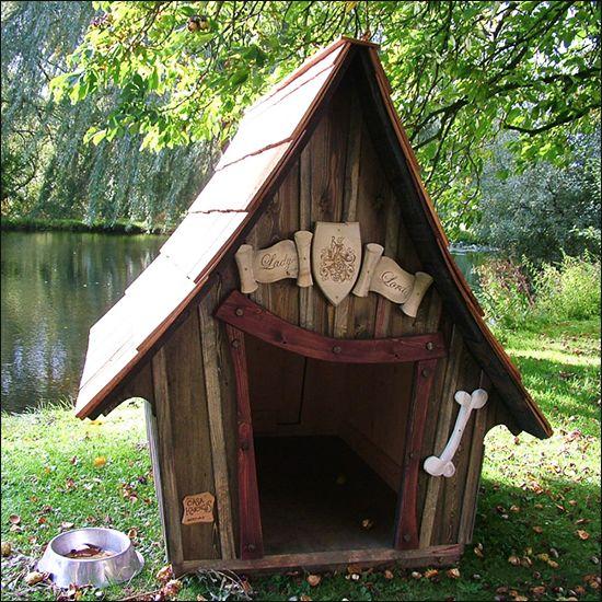 niche pour chien niche chien originale diaporama animaux doctissimo. Black Bedroom Furniture Sets. Home Design Ideas