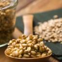 El germen de trigo