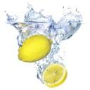 El limón