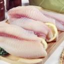 filets de poisson