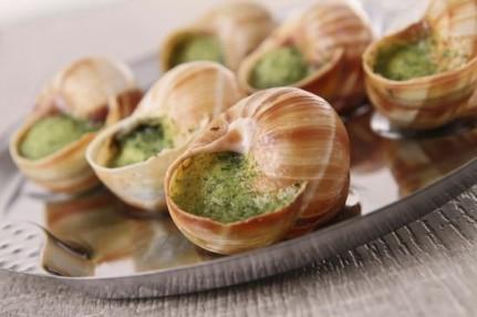 Les escargots - Cuisiner les escargots de bourgogne ...