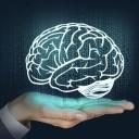 10% de notre cerveau