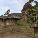 Tête à tête sensuel et musical en Nouvelle-Guinée