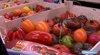 Tomate : autant de variétés que de goût à découvrir