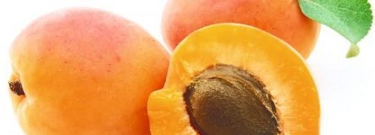 Recettes à base d'Abricot