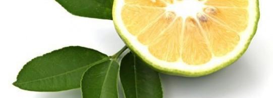Recette bergamote