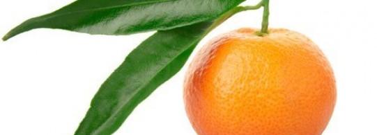 Recettes à base de Mandarine