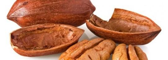 Recette noix de pécan