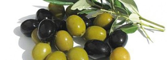 Recettes à base d'Olive