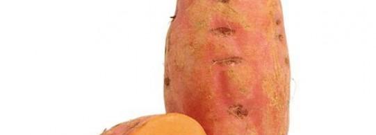 Recettes à base de Patate douce