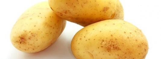 Recette pomme de terre primeur