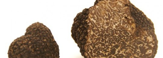 Recette truffe