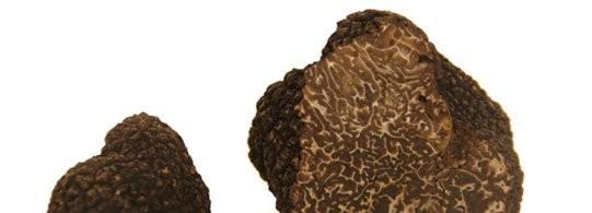 Recette truffe noire