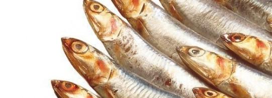 Recette anchois