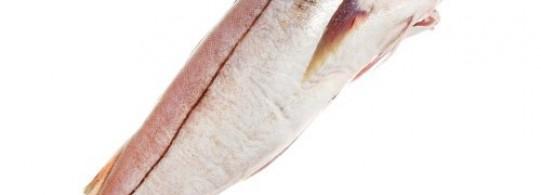 Recette haddock