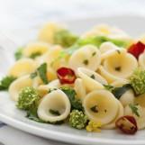 Orecchiette sauce au brocoli