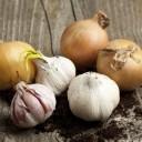 ail - oignon - alternatives au sel