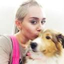 Miley Cyrus et son chien