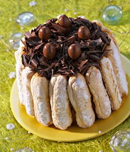 Charlotte au chocolat la cr me chiboust recette de charlotte au chocolat la cr me chiboust - Decoration charlotte au chocolat ...