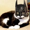 Déguisement chat Batman