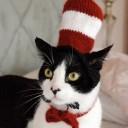 Déguisement chat Le chat Chapeauté