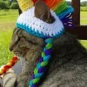 Déguisement chat licorne