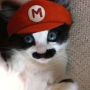 Déguisement chat Mario Bros