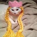 Déguisement chat princesse