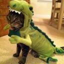 Déguisement chien de dinosaure