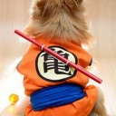 Déguisement chien Dragon Ball Z