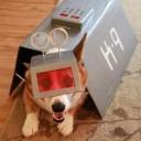 Déguisement chien station spatiale