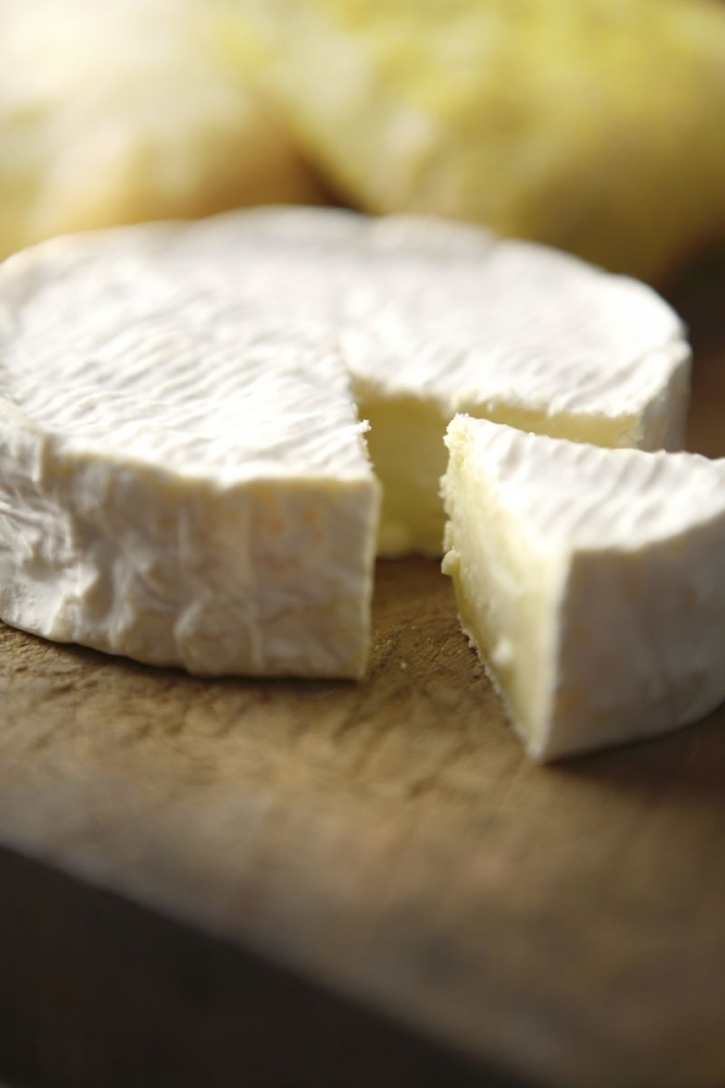 pr 233 f 233 rer les fromages 224 p 226 te molle doctissimo diaporama nutrition doctissimo
