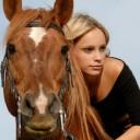cheval et confiance