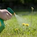 glyphosate - polluants insoupçonnés