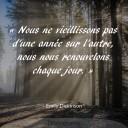 Citations28_Dickinson