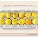 campagne-citron-cancer-du-sein