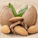 amandes - aliments potentiellement mortels