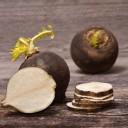 jus de radis noir - remède naturel contre la toux