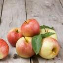 pommes - Les aliments que vous consommez mal