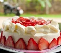 fraisier-maison