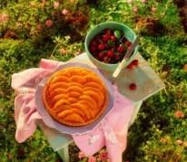 tarte-melon