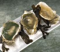 huitres-en-gelee-aux-3-saveurs
